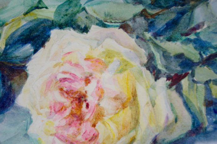 aquarelle bouquets roses charliat