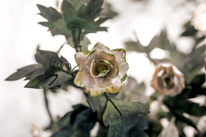 rose fleur porcelaine