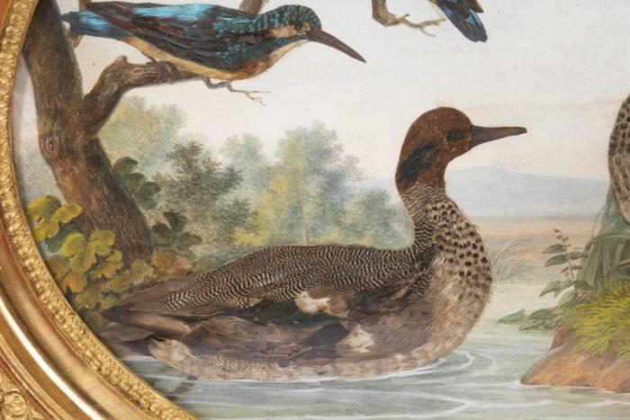 gouache oiseaux canard sur eau