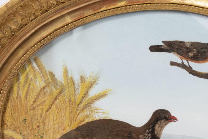gouache oiseaux champ de blé