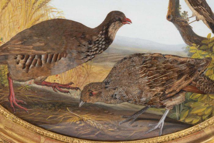 gouache oiseaux couple perdrix