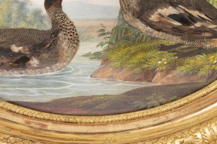 gouache oiseaux lac