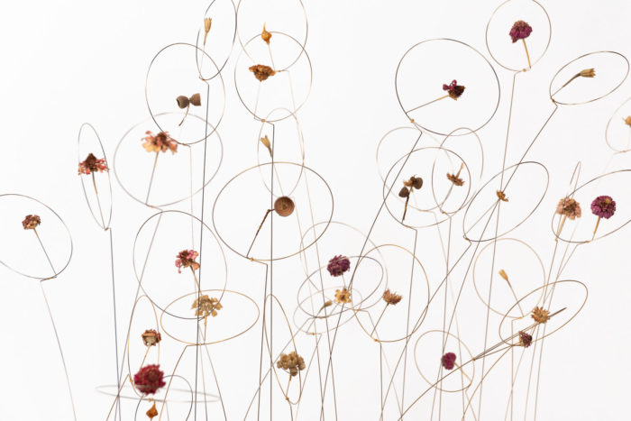 christel sadde automne fleurs sechées
