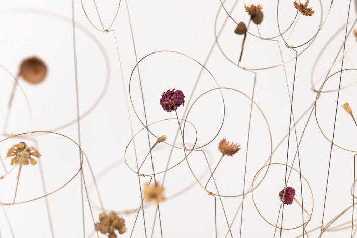 christel sadde fleurs automne