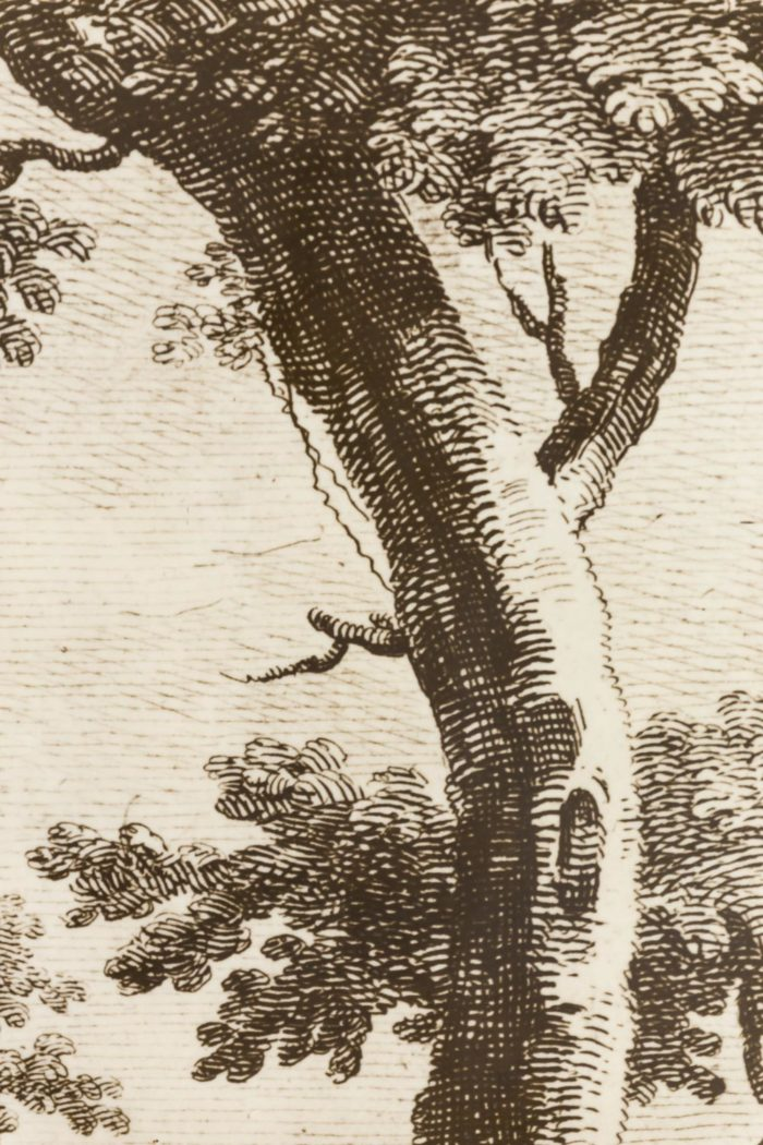 fornasetti porte papier peint decor gravure arbre