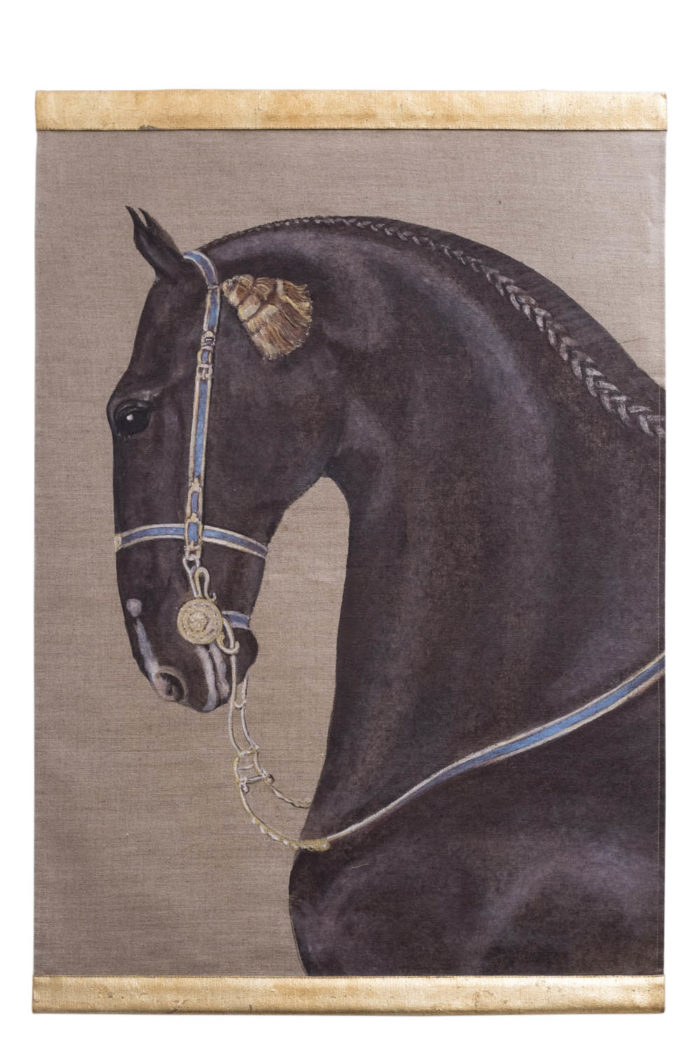 portrait cheval lusitanien noir