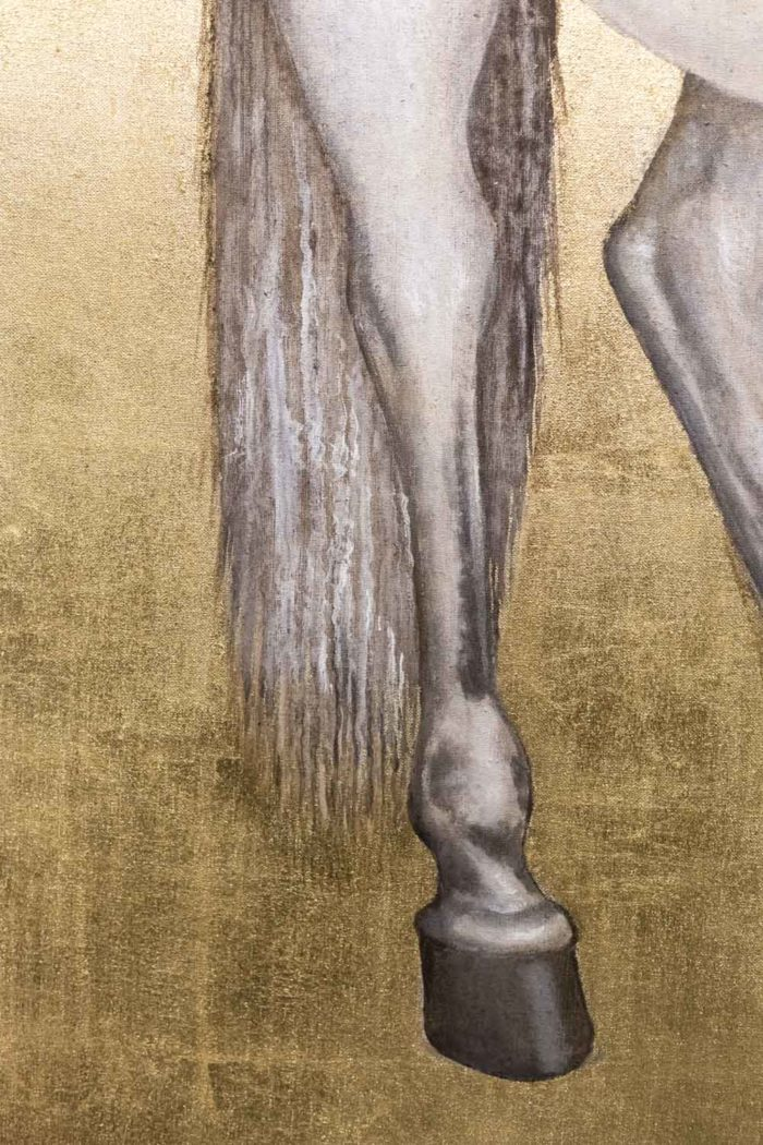 toile cheval blanc jambe