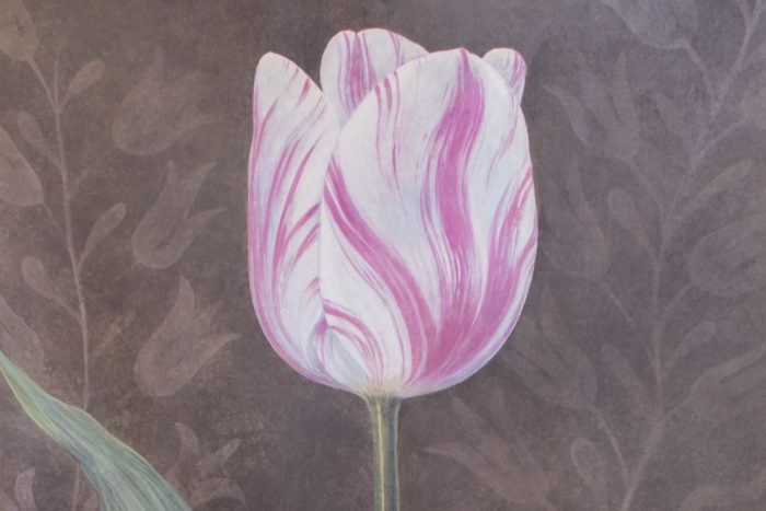 toile tulipe rose blanche